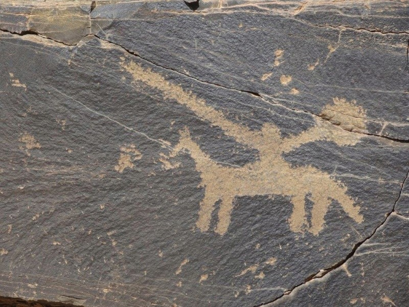 [Petites RANDOS pédestres] Site de gravures de Foum Chenna à partir de Tinzouline près de Zagora Dsc05110