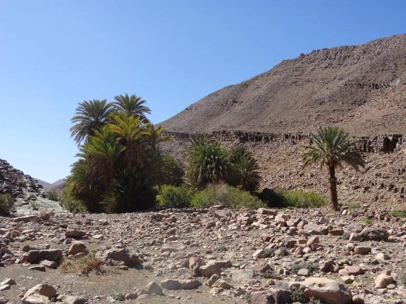 [Petites RANDOS pédestres] Site de gravures de Foum Chenna à partir de Tinzouline près de Zagora Dsc05113