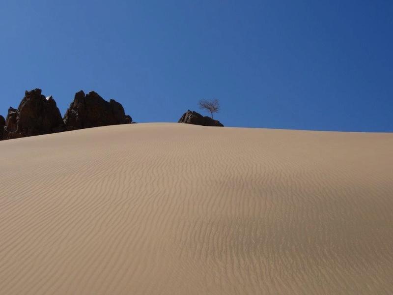 [Maroc Camp/Dernières nouvelles] camping SERDRAR à Tazzarine Dsc05524