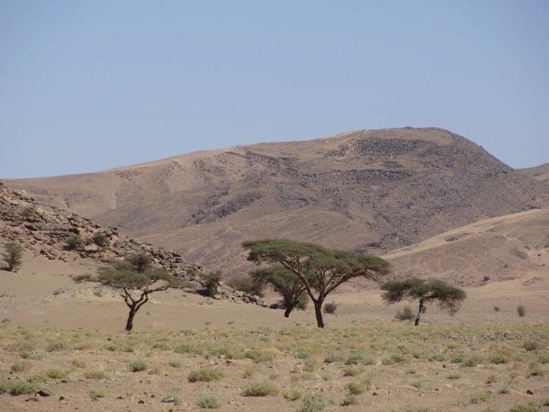 [Maroc Camp/Dernières nouvelles] camping SERDRAR à Tazzarine Dsc05526