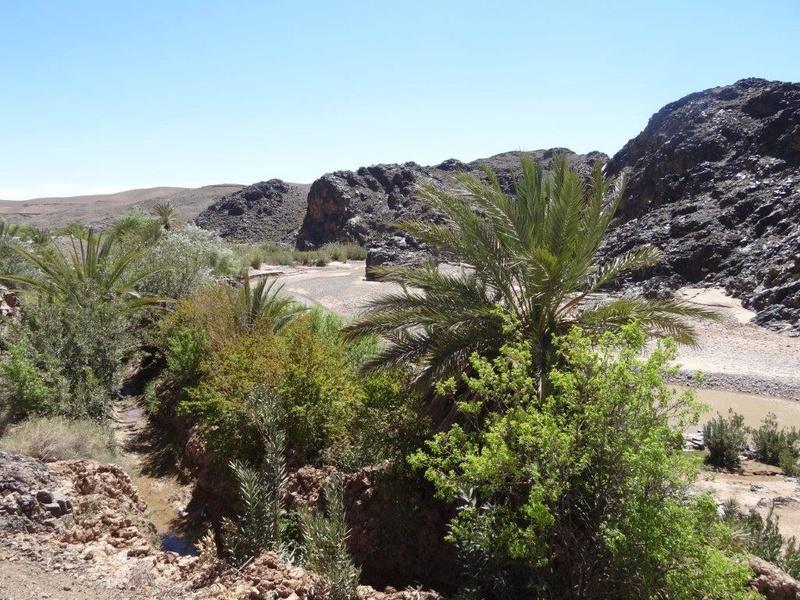[Petites RANDOS pédestres] Sidi Flah près de Skoura  Dsc05610