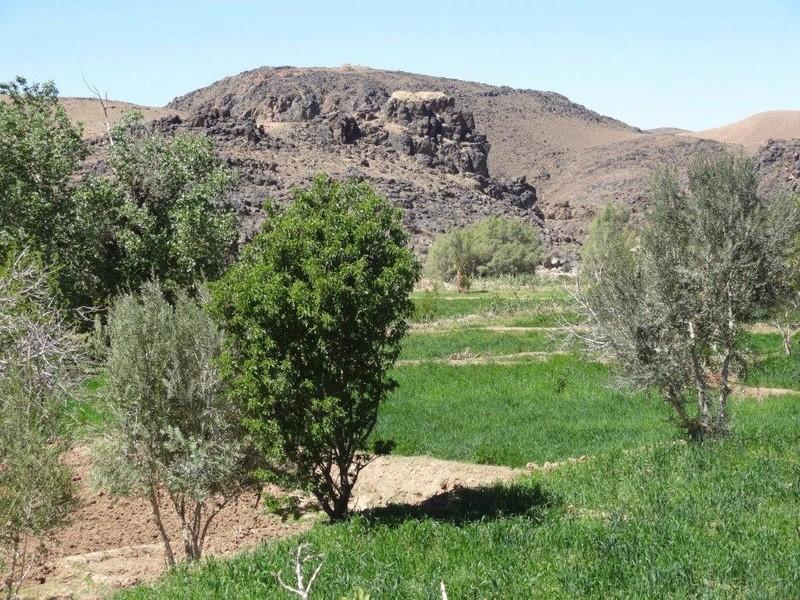 [Petites RANDOS pédestres] Sidi Flah près de Skoura  Dsc05611