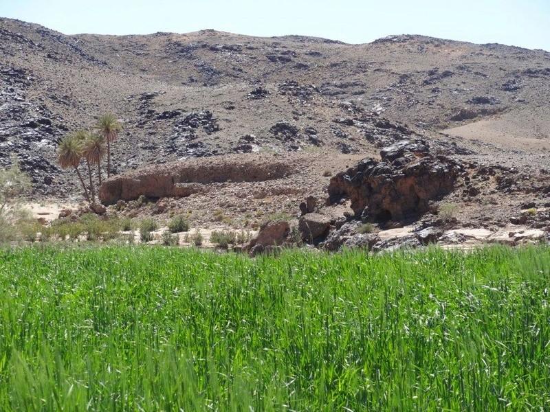 [Petites RANDOS pédestres] Sidi Flah près de Skoura  Dsc05613