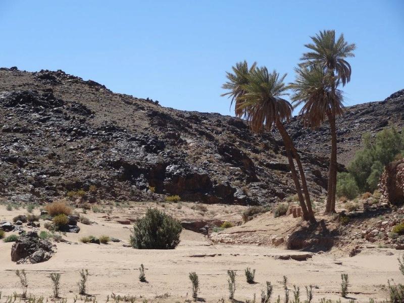 [Petites RANDOS pédestres] Sidi Flah près de Skoura  Dsc05614