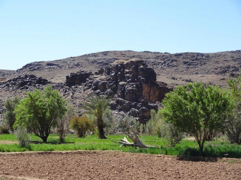 [Petites RANDOS pédestres] Sidi Flah près de Skoura  Dsc05616