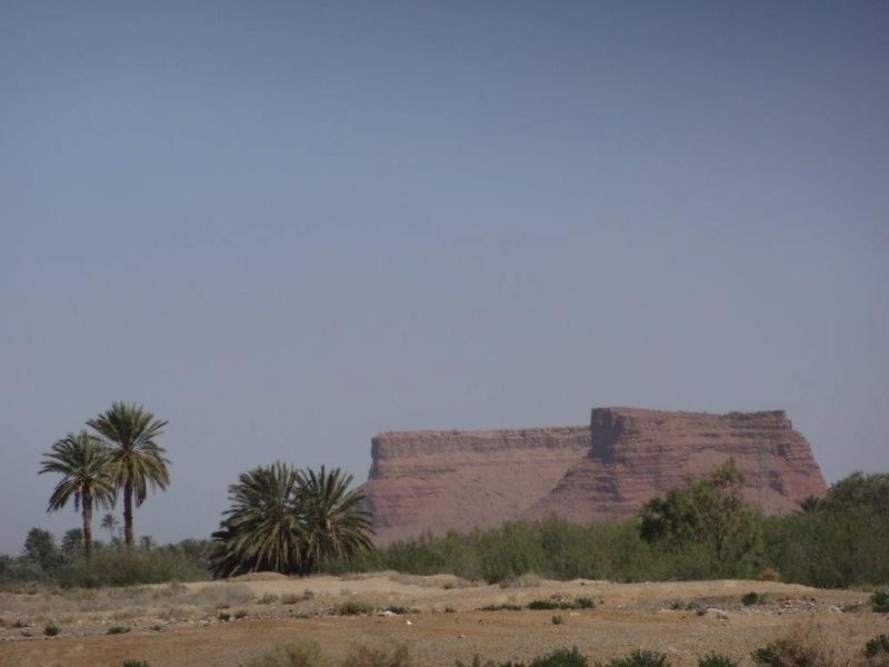 [Maroc Camp/Découverte] Camping Rekkam à Boudnib Dsc05617