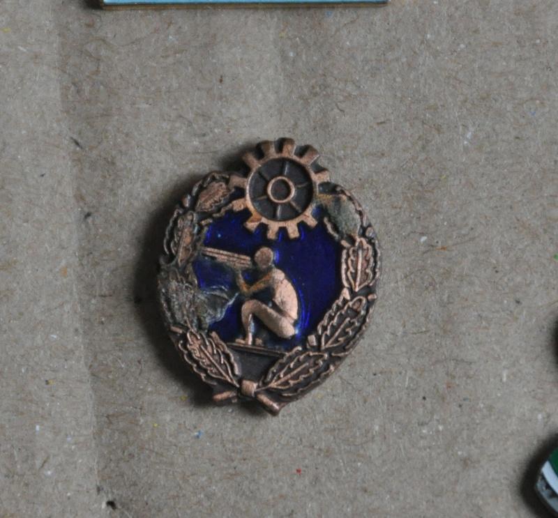 Pin's Dsc_3710