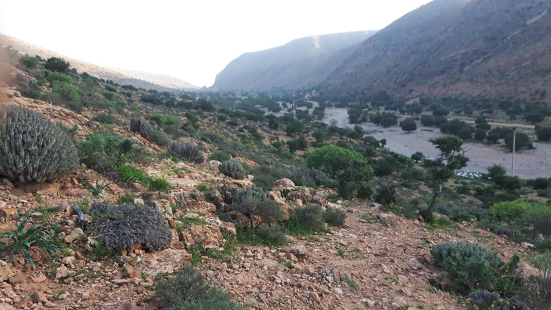 [Maroc Camp/Dernières nouvelles] Chez Paul, camping La vallée à ABAYNOU - Page 3 20170213