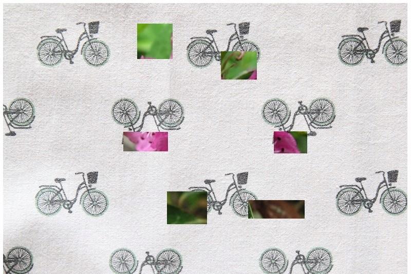 Petit Arbuste de Martine 8/05 trouvé par Snoopie Plante14