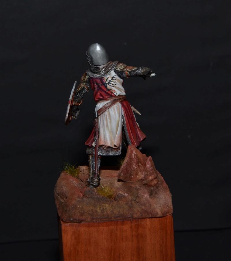 chevalier du 14° du guesclin Dsc_0711