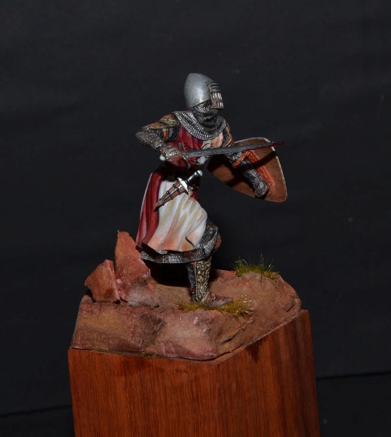 chevalier du 14° du guesclin Dsc_0712