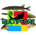 Groupe Multipêche