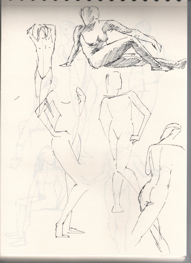 [defis] Lundi Anatomie - Page 2 Sc510
