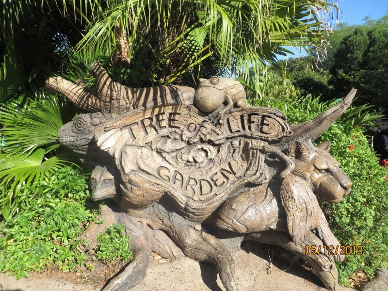 [FLORIDA 2013] 3 semaines magiques en Floride - Page 3 Img_1319