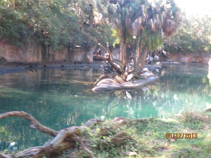 [FLORIDA 2013] 3 semaines magiques en Floride - Page 3 Img_1420