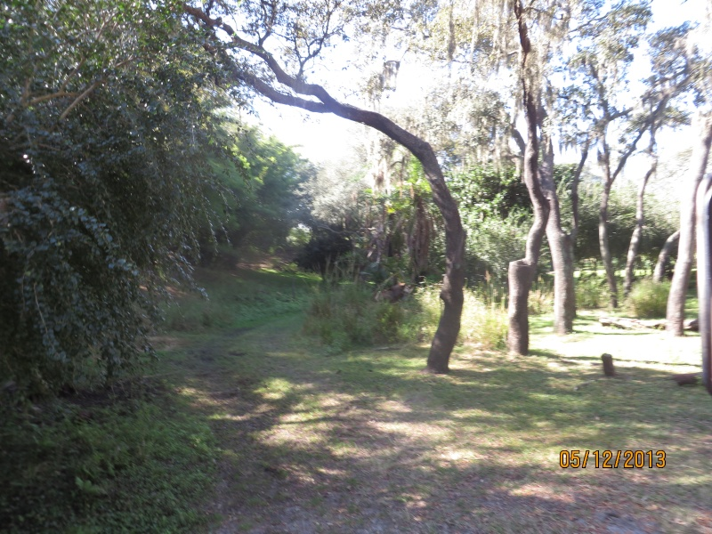 [FLORIDA 2013] 3 semaines magiques en Floride - Page 3 Img_1422