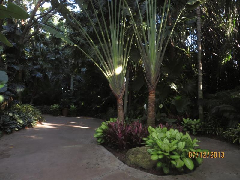 [FLORIDA 2013] 3 semaines magiques en Floride - Page 4 Img_2033