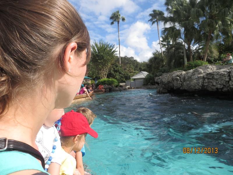 [FLORIDA 2013] 3 semaines magiques en Floride - Page 4 Img_2127