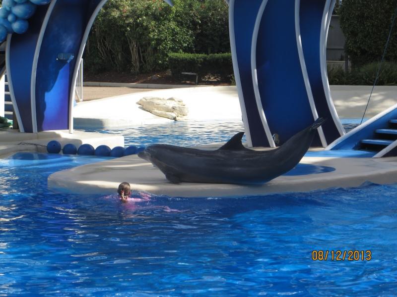 [FLORIDA 2013] 3 semaines magiques en Floride - Page 4 Img_2215