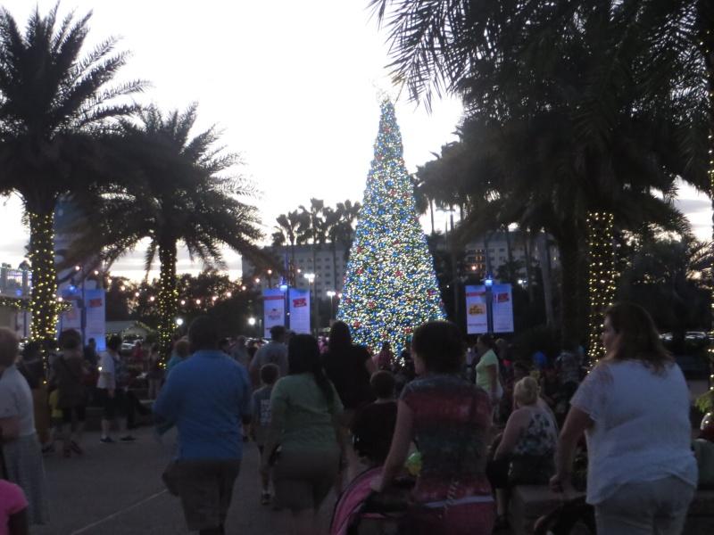 [FLORIDA 2013] 3 semaines magiques en Floride - Page 4 Img_2413