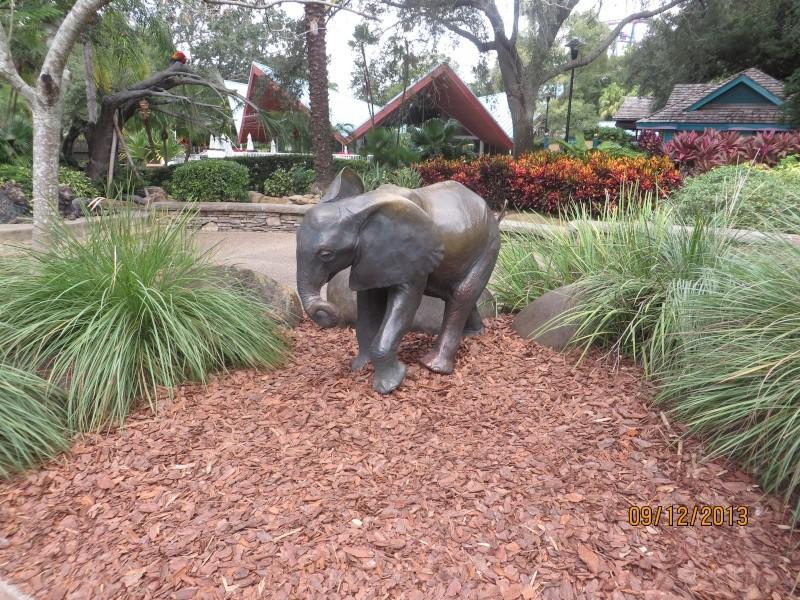 [FLORIDA 2013] 3 semaines magiques en Floride - Page 5 Img_2417