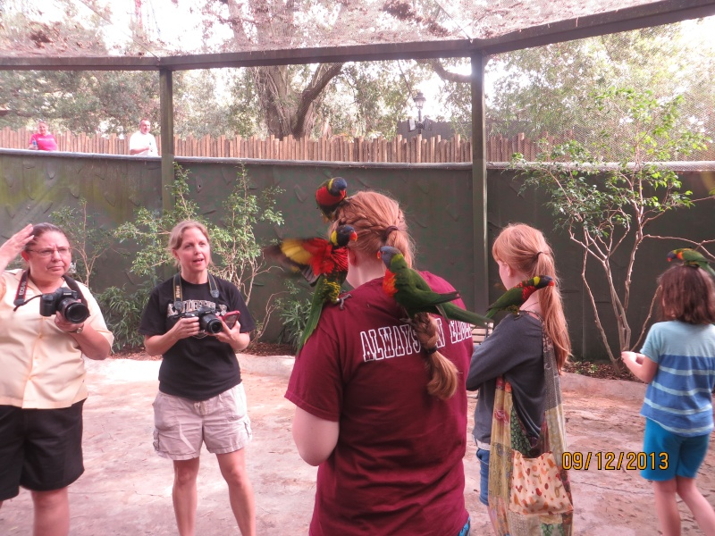[FLORIDA 2013] 3 semaines magiques en Floride - Page 5 Img_2423