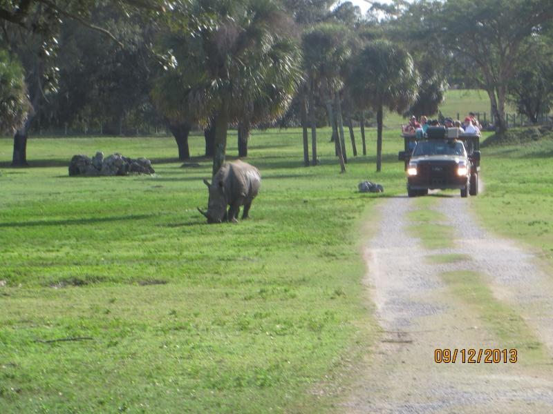 [FLORIDA 2013] 3 semaines magiques en Floride - Page 5 Img_2516