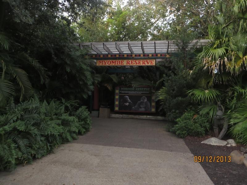 [FLORIDA 2013] 3 semaines magiques en Floride - Page 5 Img_2614