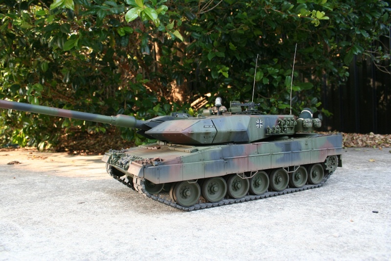 Digital Nato Leo 2 Img_4811