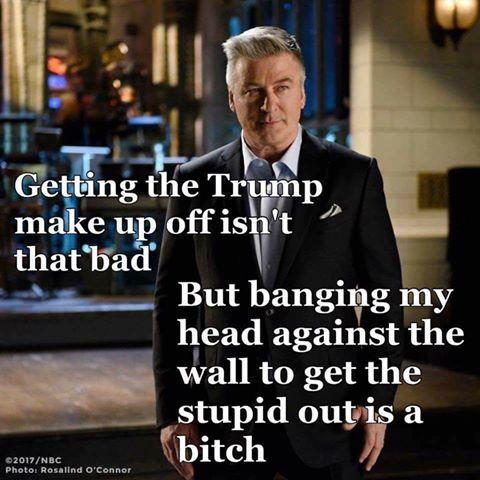 Donald Trump Vent Thread - Page 10 Trump313
