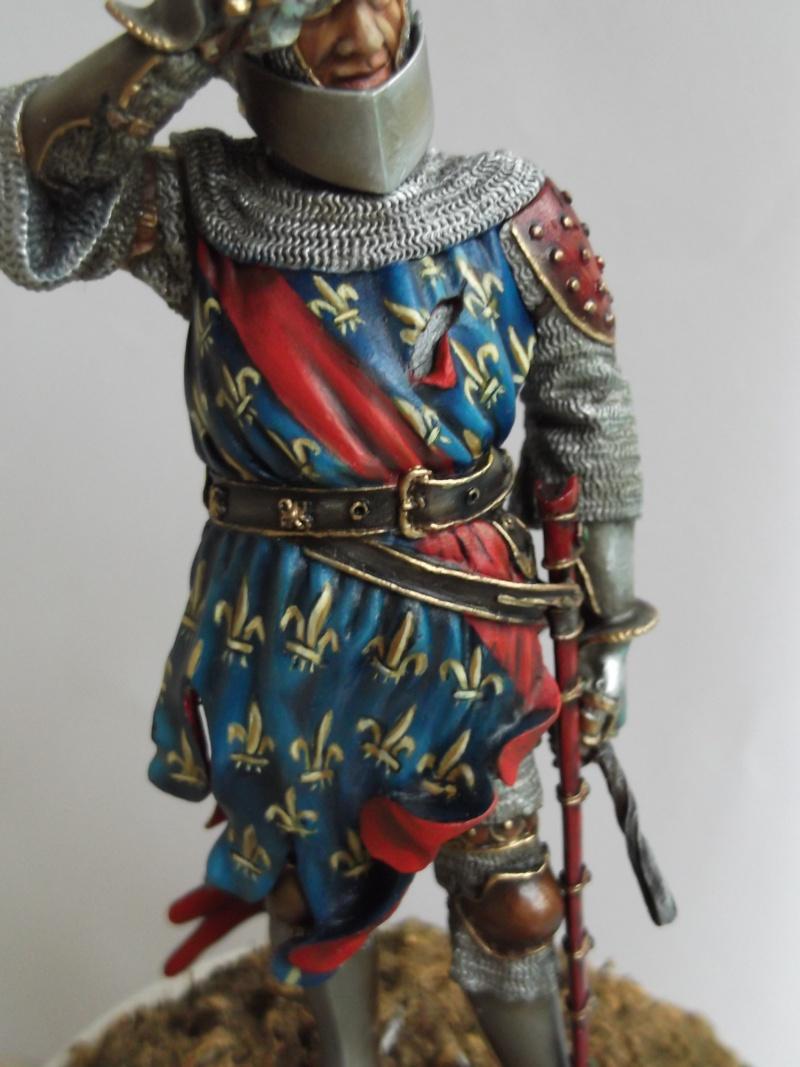 chevalier français du 13Siècles Dscf6015