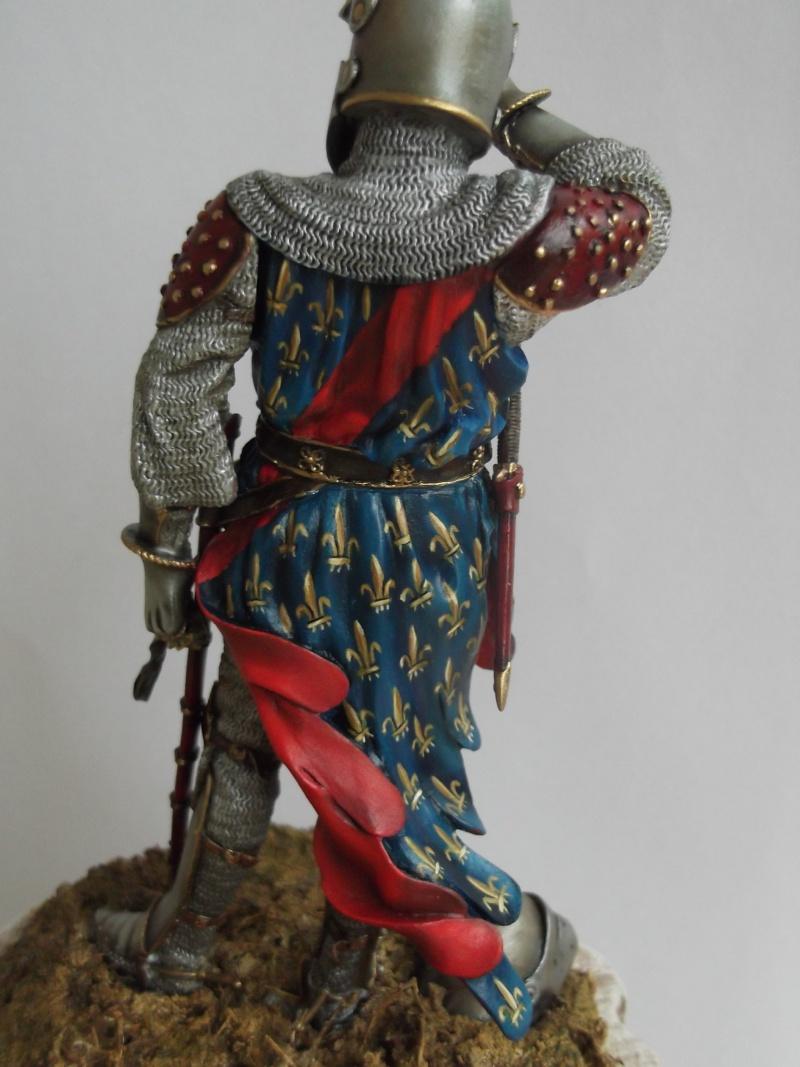chevalier français du 13Siècles - Page 2 Dscf6110