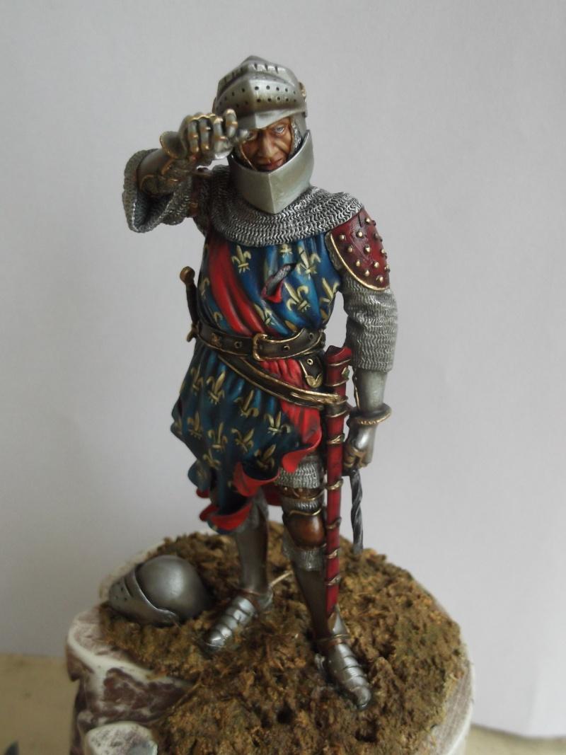 chevalier français du 13Siècles - Page 2 Dscf6113