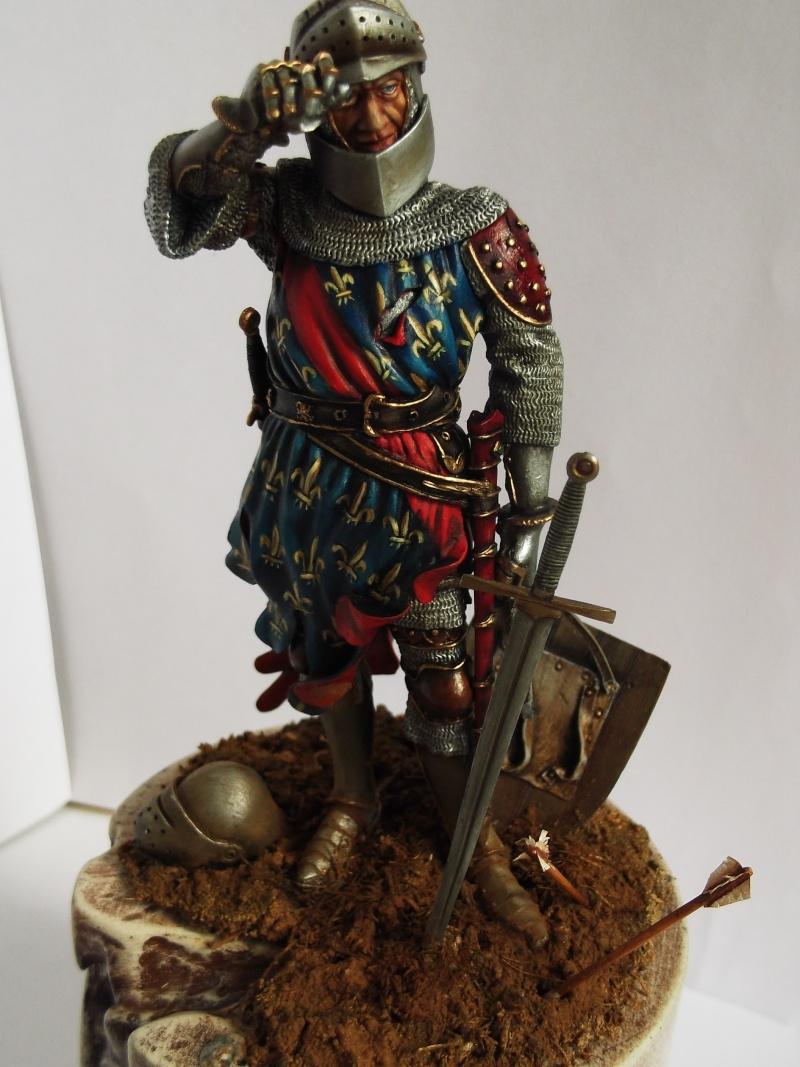 chevalier français du 13Siècles - Page 2 Dscf6115