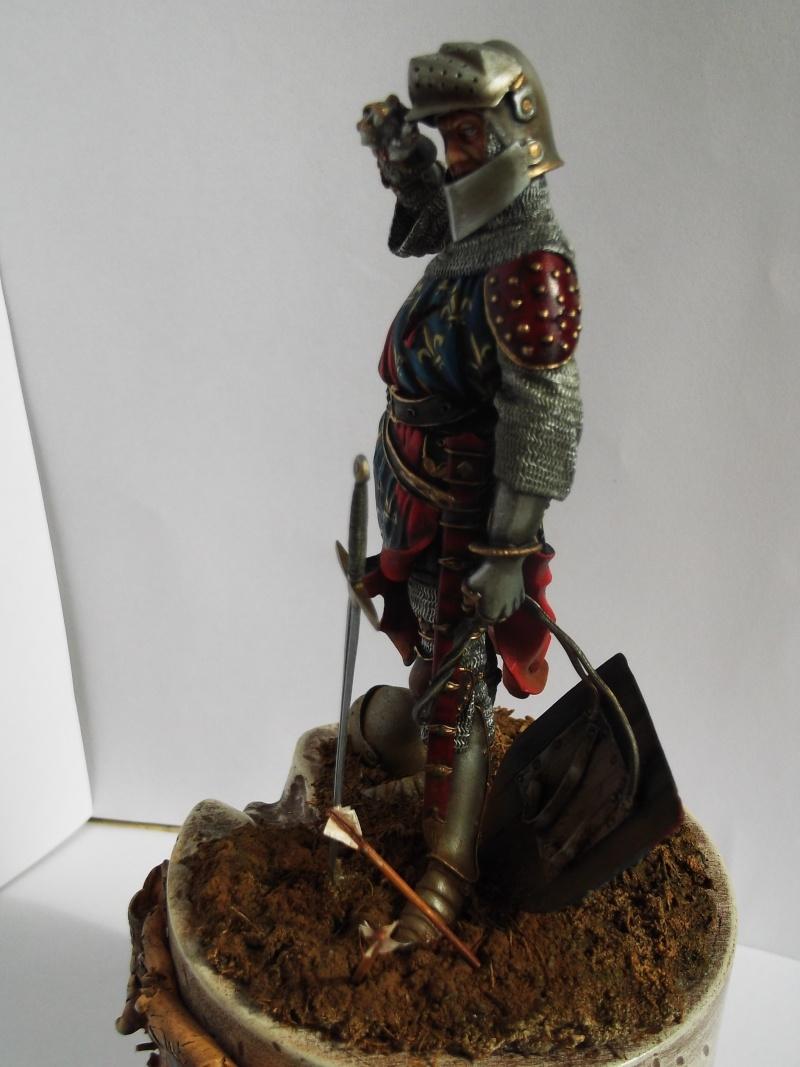 chevalier français du 13Siècles - Page 2 Dscf6116