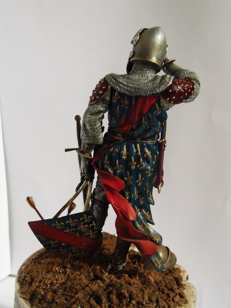 chevalier français du 13Siècles - Page 2 Dscf6117