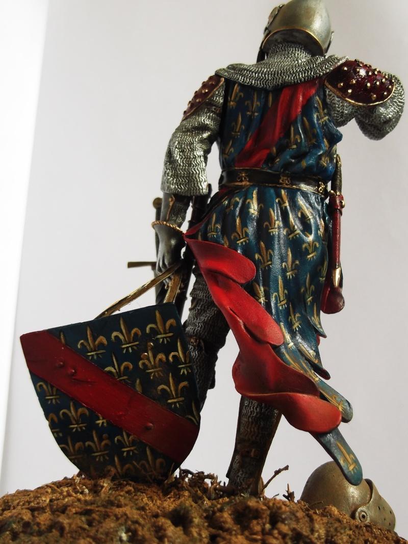 chevalier français du 13Siècles - Page 2 Dscf6119