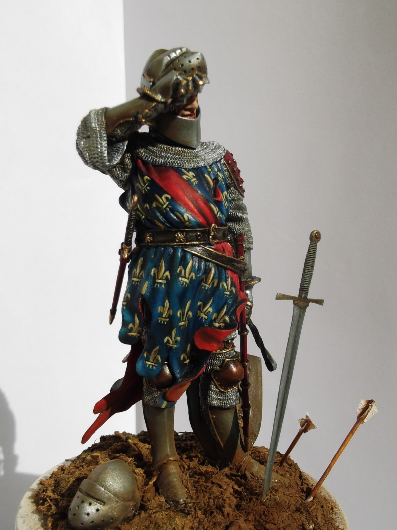 chevalier français du 13Siècles - Page 2 Dscf6121