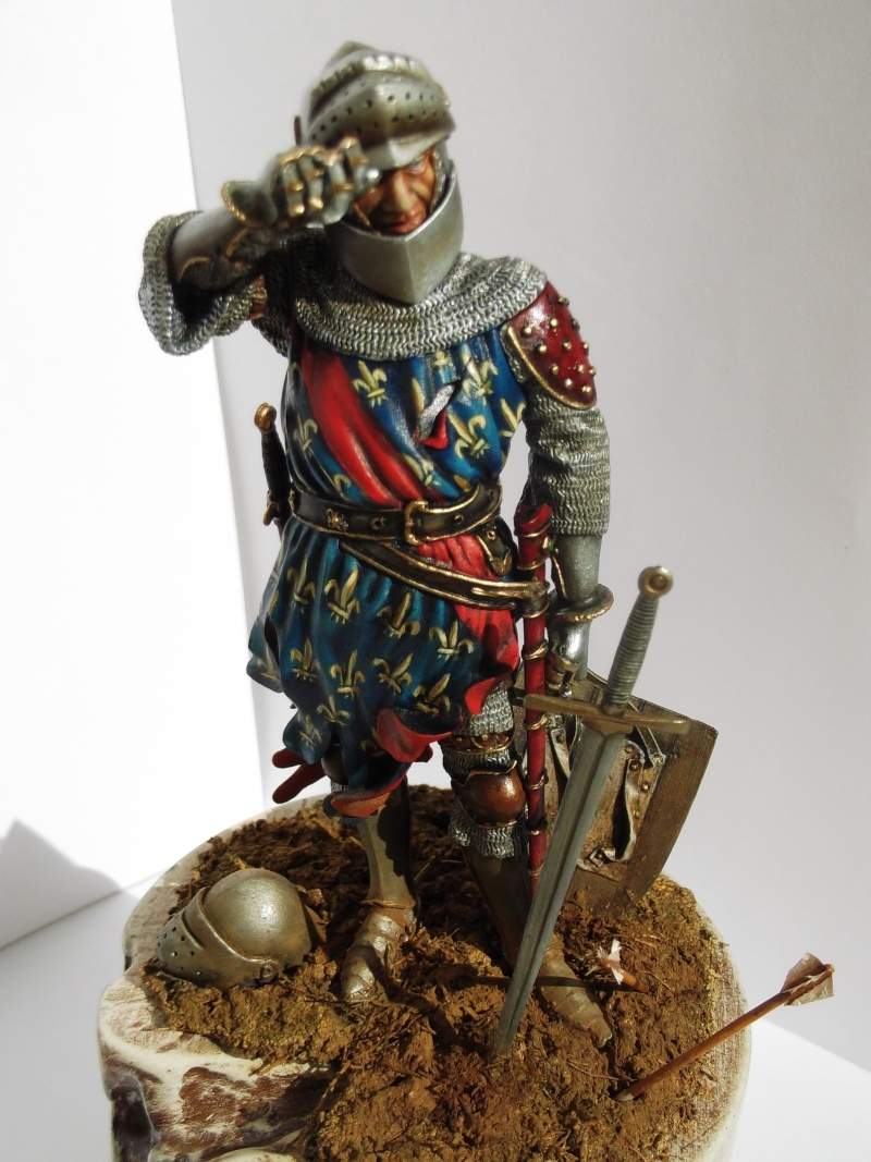 chevalier français du 13Siècles - Page 2 Dscf6122