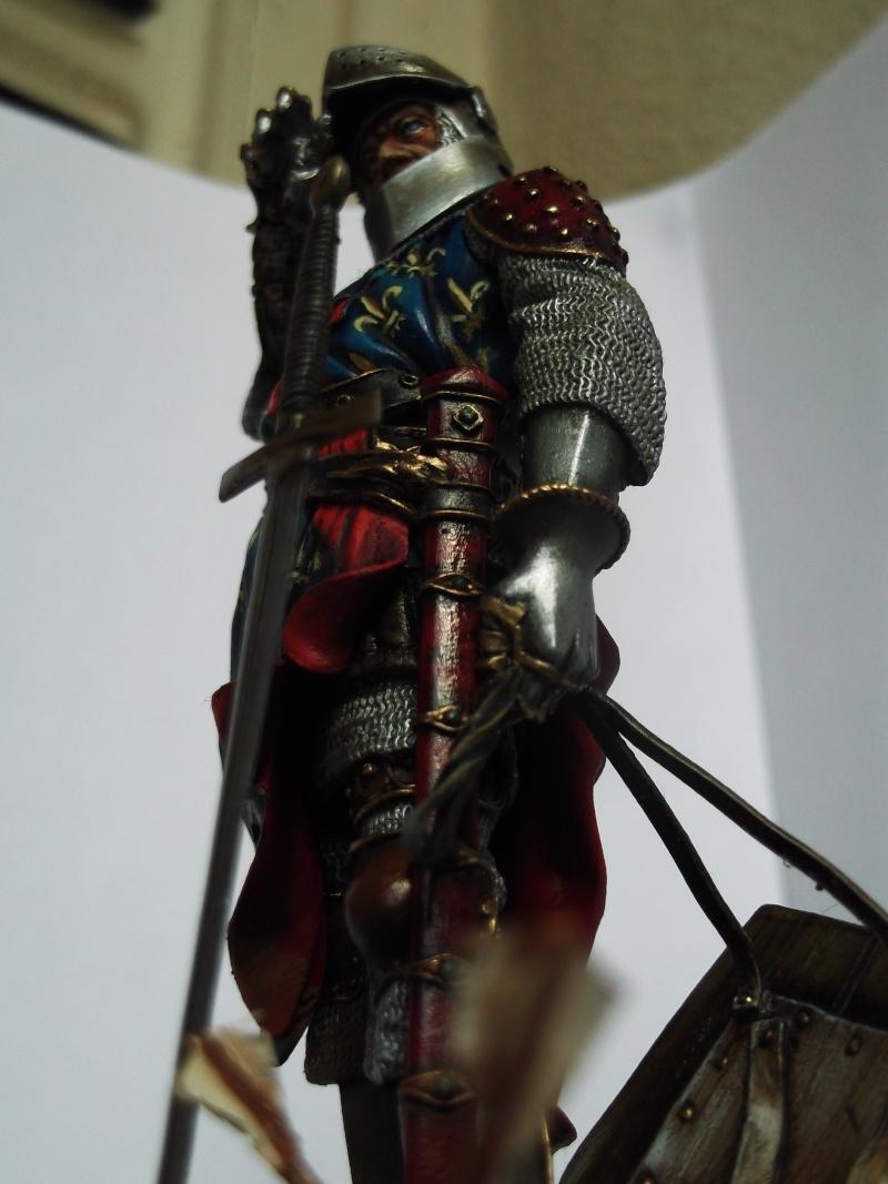 chevalier français du 13Siècles - Page 2 Dscf6123