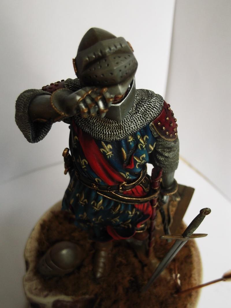 chevalier français du 13Siècles - Page 2 Dscf6125