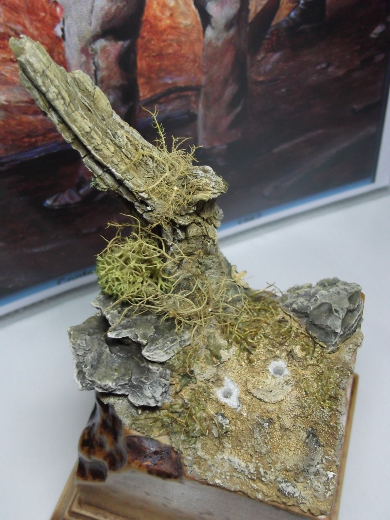 Tambour confédéré Elite miniature par Giacomel Dscf6338