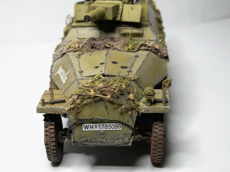 GERMAN SD.kfz.251/9 ausf.d  1:35  (afv club) - Page 3 Pict0849