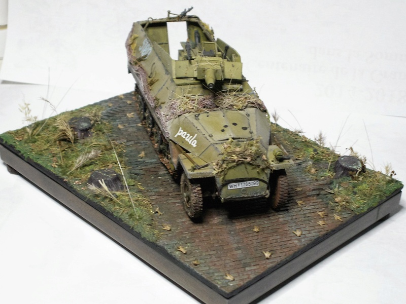 GERMAN SD.kfz.251/9 ausf.d  1:35  (afv club) - Page 3 Pict0878