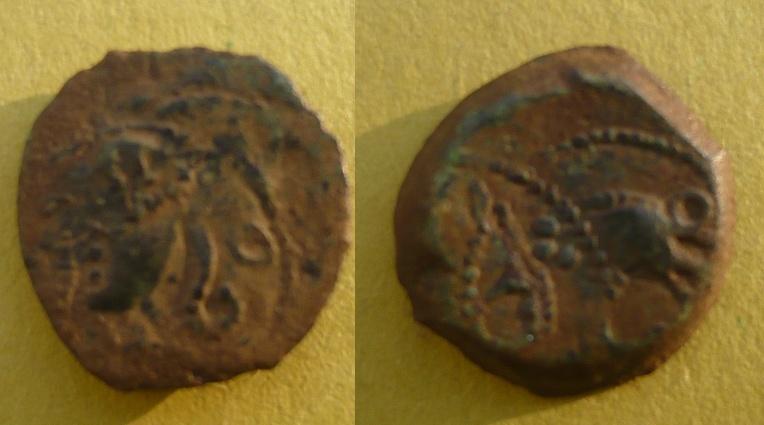 Bronze rutène au sanglier d'Avignon ? Sans_t10