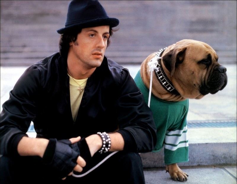 Sylvester Stallone.... - Page 3 Rocchi10