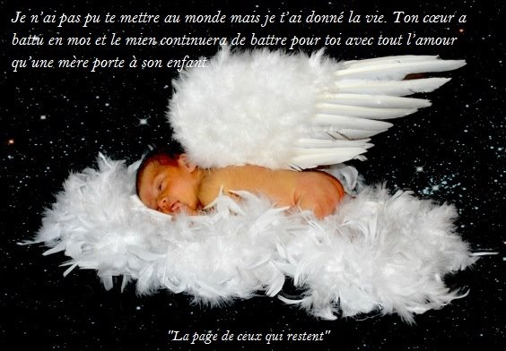 mon bébé d'amour guillaume - Page 4 55912110