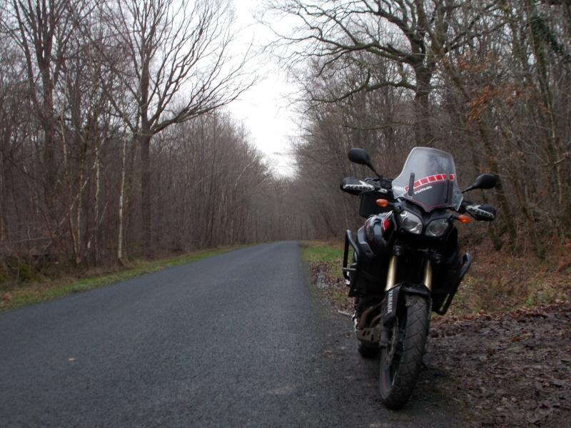 Vos plus belles photos de moto - Page 37 Dscn0311