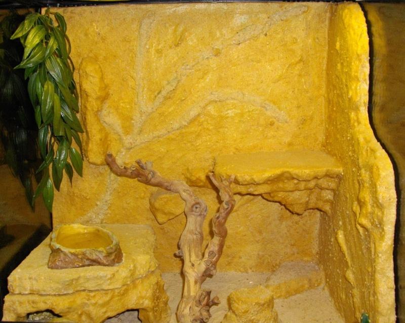 Construction  d'un terrarium pour mon gecko Imgp6217