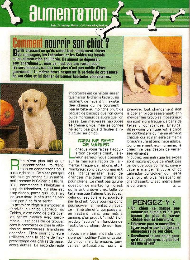 Alimentation chiot et chienne gestante-allaitante ,lab mag 2004-05 1c_nou10